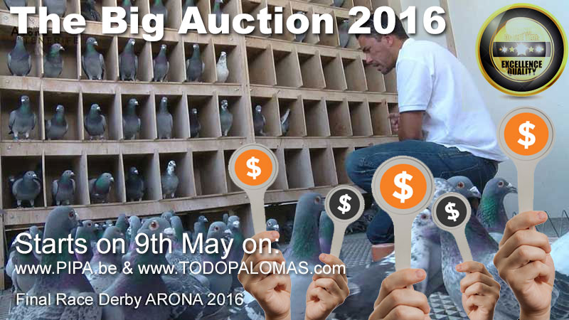 auction2016