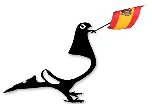 Ledesma Internacional Pigeon Results